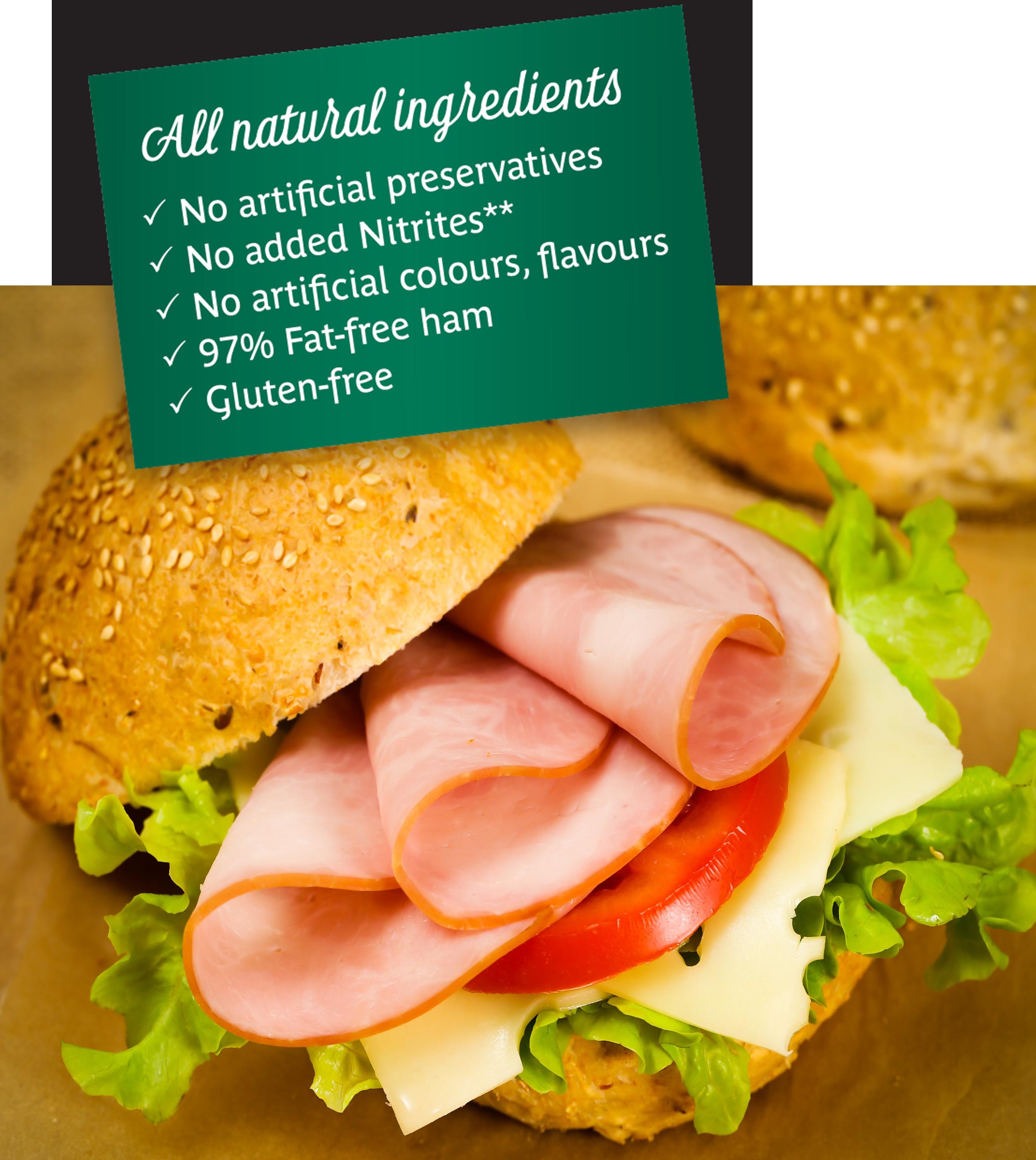Sandwich natural new banner