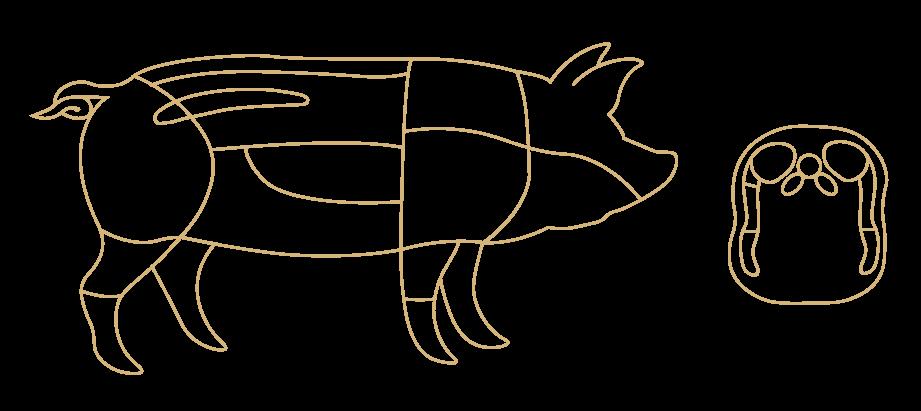 pig-image-dorsogna-new